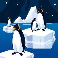 pinguins flutuando no céu noturno do mar de iceberg vetor