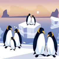 grupo de pinguins no mar iceberg do pólo norte vetor