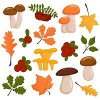 conjunto de elementos do vetor de outono. estilo de desenho vetorial.