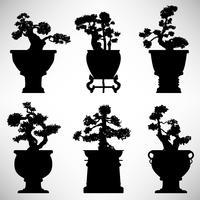 Potenciômetro de flor da planta da árvore dos bonsais. vetor