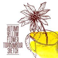 esboço de topinambour de mão desenhada flor amarela vetor