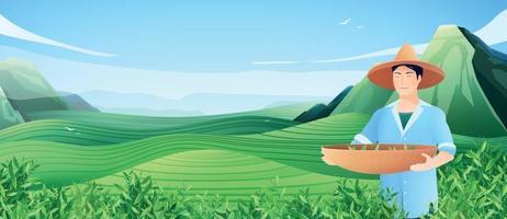 cartaz horizontal de produção de chá natural vetor