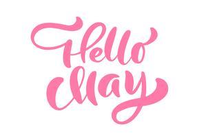 Frase de letras rosa caligrafia Olá maio vetor