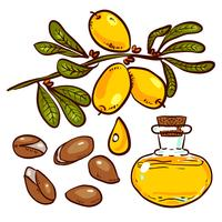 Conjunto de óleo de argan vetor