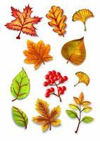 ilustração de conjunto de vetores de folhas em aquarela de outono