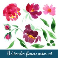 Conjunto de lindas flores em aquarela