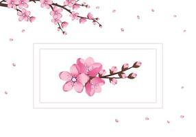 conjunto de ícones de flores de sakura fofas. os ramos de cerejeira floresceram vetor