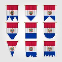 bandeira do paraguai em diferentes formas, bandeira do paraguai em várias formas vetor