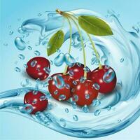vetor realista de fruta cereja