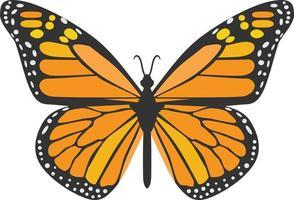 animal inseto borboleta laranja vetor