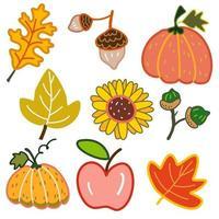 outono folha e flor e elementos outono conjunto cartoon vetor