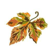 folha de bordo no outono e outono isolado colorido pintado à mão vetor