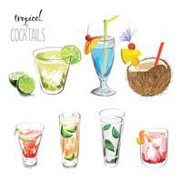 Conjunto de cocktails tropicais.