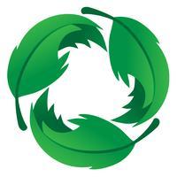 vetor de logotipo eco amigável folha