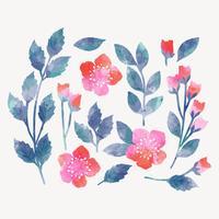 Elementos florais em aquarela de vetor