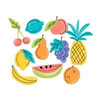 Frutas de desenho vetorial mão vetor
