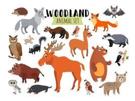 animais da floresta da floresta isolados no branco vetor