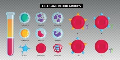 conjunto transparente de células de tipos sanguíneos vetor