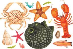 criaturas marinhas ilustrações pintadas à mão em aquarela vetor