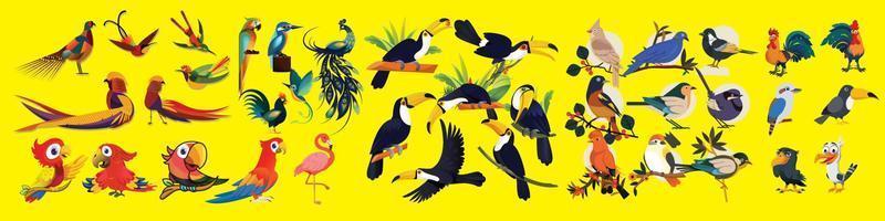 desenho vetorial de personagens de pássaros vetor