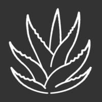 suculento ícone de giz branco sobre fundo preto vetor