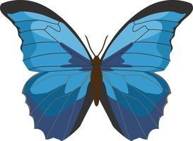 animal inseto borboleta azul vetor