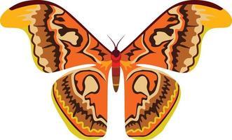 animal inseto grande borboleta vetor