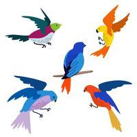 Conjunto de Clipart de pássaro voador vetor