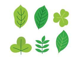 Clipart de folha verde vetor