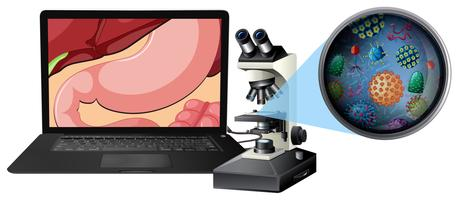 Um microscópio e bactérias do estômago vetor