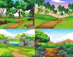 Quatro cenas da natureza com trilha na mata vetor