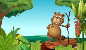 Um castor na floresta vetor