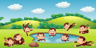 Macaco brincando na natureza vetor