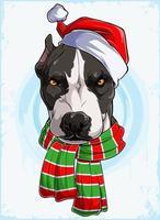 cabeça de cachorro pitbull natalino engraçado sério com chapéu de Papai Noel e lenço, cachorro pitbull natalino vetor