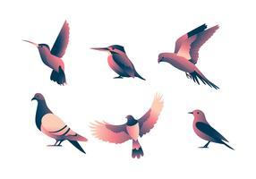 Conjunto de clipart de aves vetor