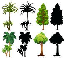 Quatro, diferente, plantas, com, silueta vetor