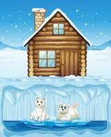 Urso Polar e Cabana do Norte vetor