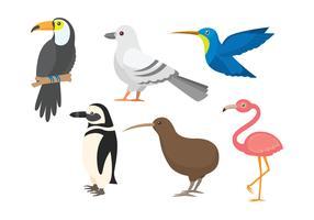 Conjunto de clipart de pássaro vetor