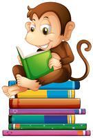Macaco e livros vetor