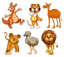 Um grupo de animais selvagens vetor