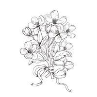 Árvore de florescência. Entregue o ramalhete botânico tirado dos ramos da flor no fundo branco. Ilustração vetorial