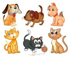 Animais de estimação adoráveis vetor
