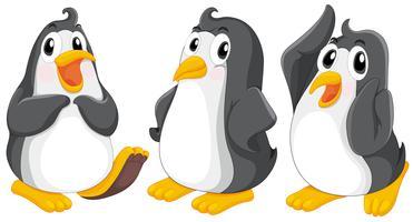 Três pinguins fofos vetor