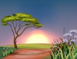 Um pôr do sol no topo da colina vetor