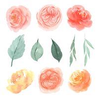 Aquarela florals mão pintado com banner de texto, aquarelle flores exuberantes isolado