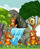 Ursos relaxantes na cachoeira