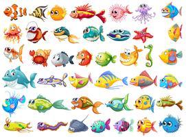 Coleção de peixes vetor