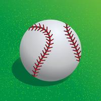 Beisebol Realista Legal vetor