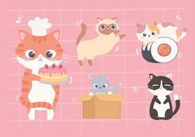 conjunto de gatinhos fofos vetor