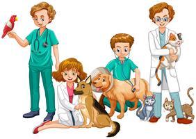 Médicos veterinários com gatos e cães vetor
